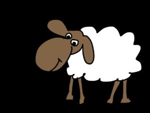sheep-183057_1280